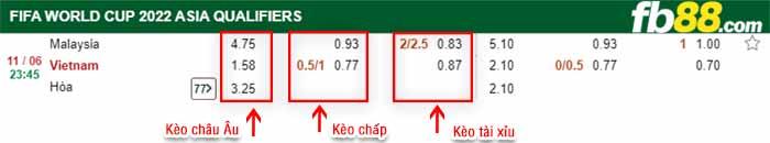 ty le keo chau a Viet Nam vs Malaysia 11 06 2021